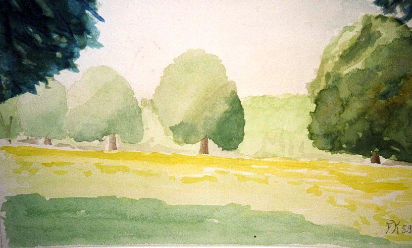 arbres degrages.1.jpg