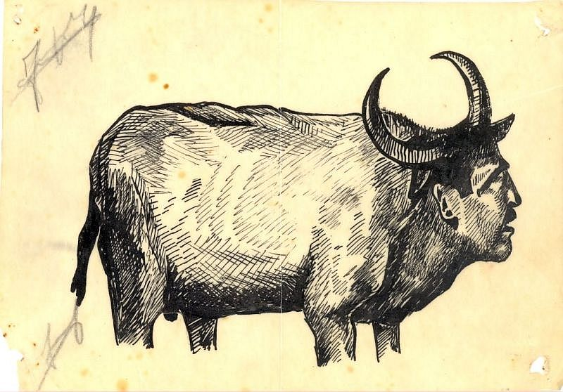 2.Caricature  Moryoussef  Buffle.jpg