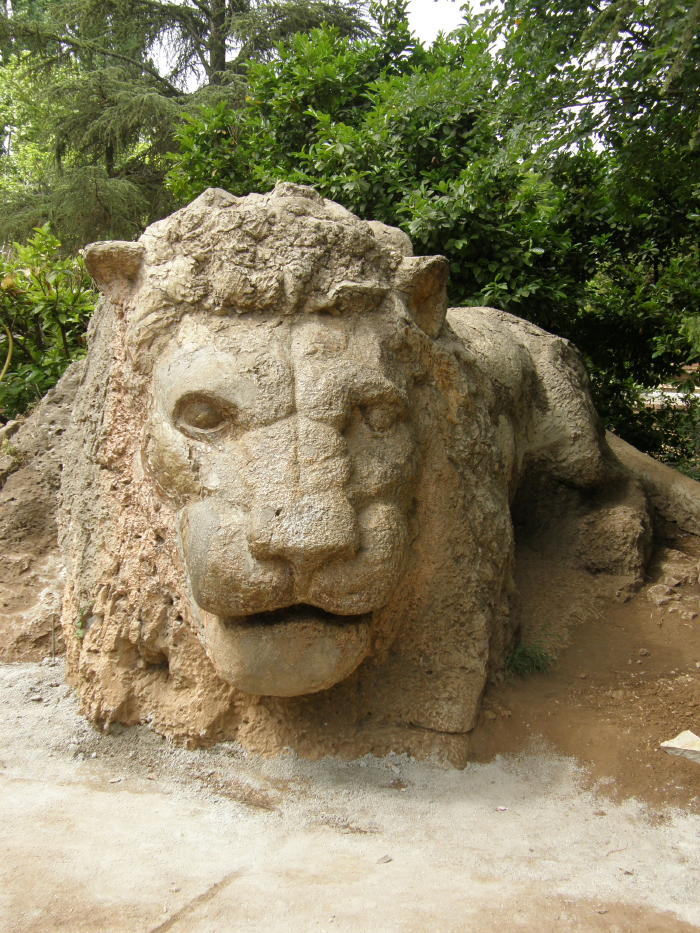 lion d\'ifrane.jpg