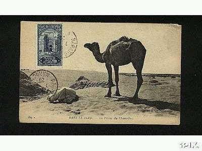 Dans le desert marocain.JPG