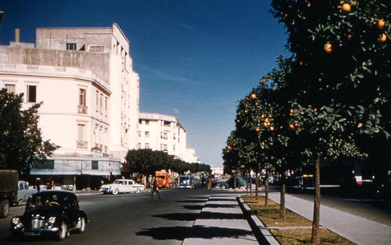 1957 - Avenue Lyautey - Meknès.jpg
