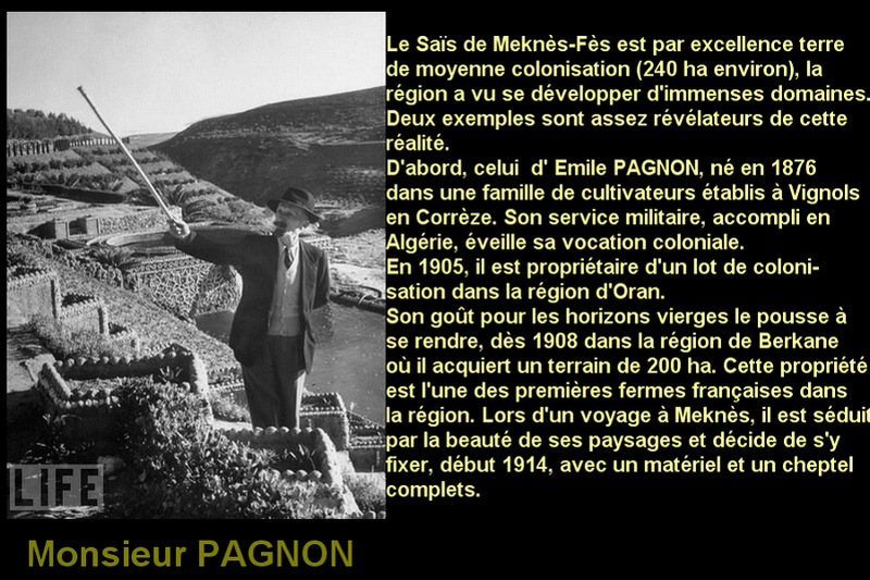 pagnon 2.jpg