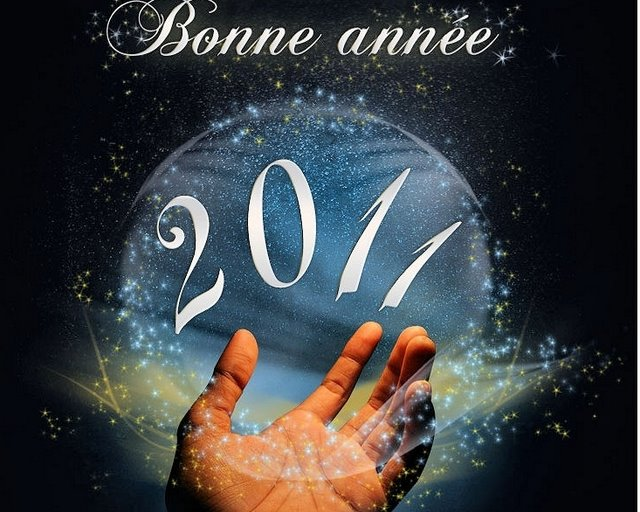 BONNE ANNEE 2011.JPG