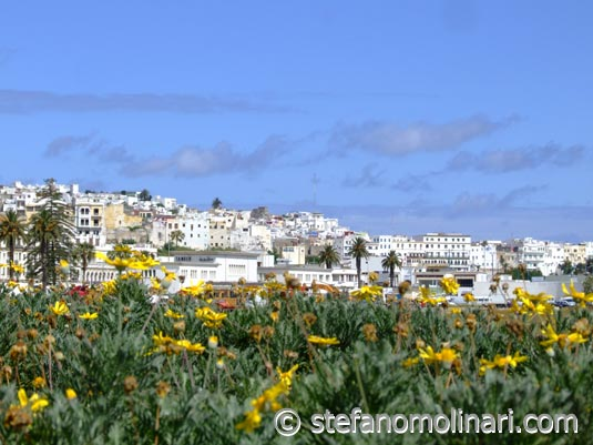 Medina-Tangier-00.jpg