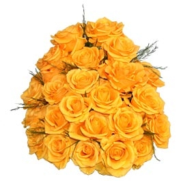 24_two_dozen_yellow_roses_bunch.JPG