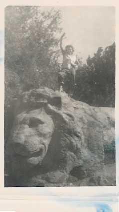 aout 1956 le lion d\'Ifrane.jpg