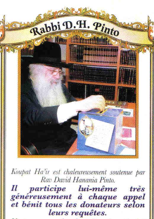 rabbi david.jpg