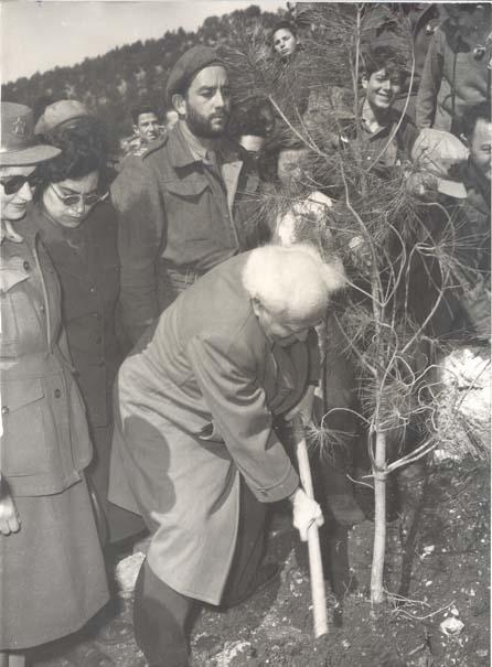 ben gourion plantant un arbre.jpg