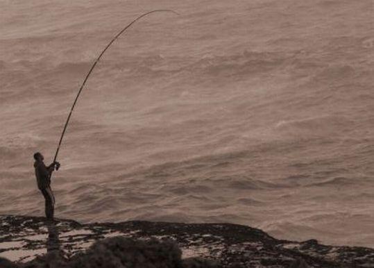 Fourreau cannes a peche  Accessoires de pêche  Comparer les prix sur